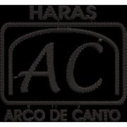 Matriz de Bordado Logo Hara Arco de canto