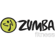 Matriz de Bordado Logotipo zumba